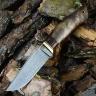 Нож КОБЗОН, БУЛАТ, корень ореха